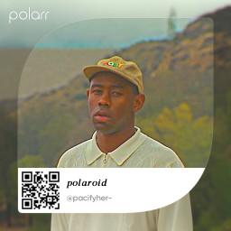 filter polarr