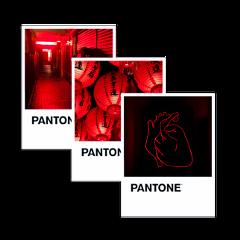 red redaesthetic pantone pantonecolors pantoneaesthetic aesthetic aesthetictumblr aestheticedit heart love passion freetoedit unsplash