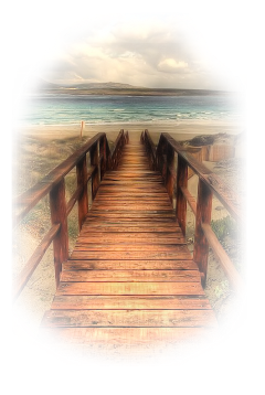 bridge beachview seaview landscape scenery freetoedit
