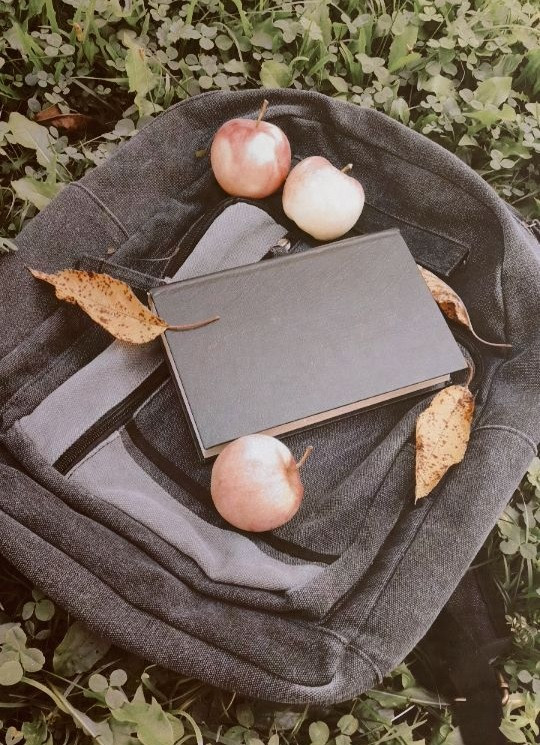 Hi guys!🙌 School posts today😁. Follow more photos soon, something cool. Wait for that🤙 Theme- BACK TO SCHOOL • • • • • • #backtoschool #school #book #letter #leaves #apples #autumn #booklover #freetoedit  #myphotography #madebyme #nature #bag #schoolbag #bookstagram #schooltime #vibes #like #share #repost #comment #followme @pa