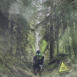 freetoedit mysterious mist forest gasmask toxic sign unsplash