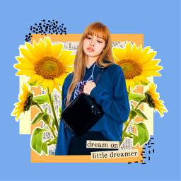 freetoedit tumblr aesthetic picsart simple frame sunflower blue yellow