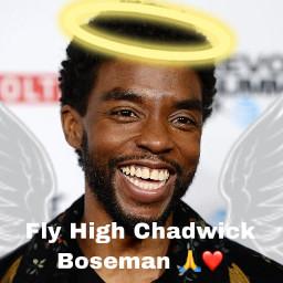 chadwickboseman wakandaforever blackpanther restinpeace