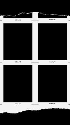 freetoedit polaroid fotos photography tumblr collage edit