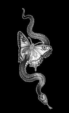 freetoedit cobra tumblr pretoebranco black collage paper papel