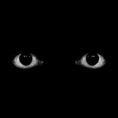eyes creepy creepycore horror spooky halloween weirdcore asthetic creepyaesthetic traumacore anxiety paranoid paranoia freetoedit