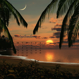 sunset sea palmtrees freetoedit srcseptembercalendar septembercalendar