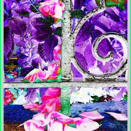 photography flowerarrangement flora railings garden rtfartee myphoto myedit curvestool colourchange