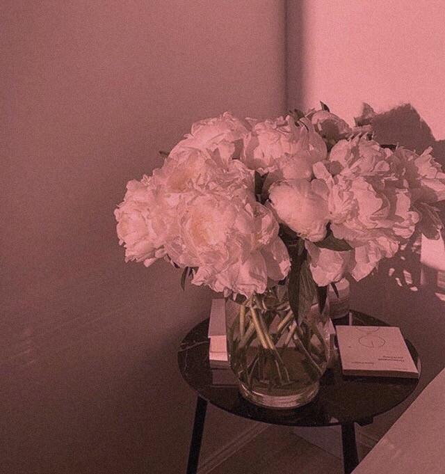 Simplicity 🌸  #wallpapers #wallpaper #simple #flowers #minimal #roomdecor #nature #whiterose #roses #minimalist #whiteaesthetic