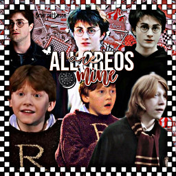 imadethisnotyou colorful likethis ronweasley ron weasley gryffindor ronald ronaldweasley weasleys hp harrypotter hogwarts aesthetic multiplecolors stickers dontsteal post dontremixit nofreetoedit freetoedit