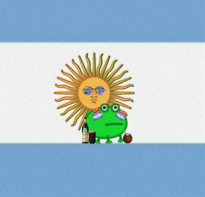 Ranita argentina🧉  #Argentina #ranita #mate #fernet #fernetconcoca #dulcedeleche #milanesa #sol #celeste #blanco #verde