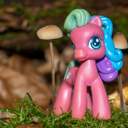 photography toy forest macro mypic pink pony freetoedit