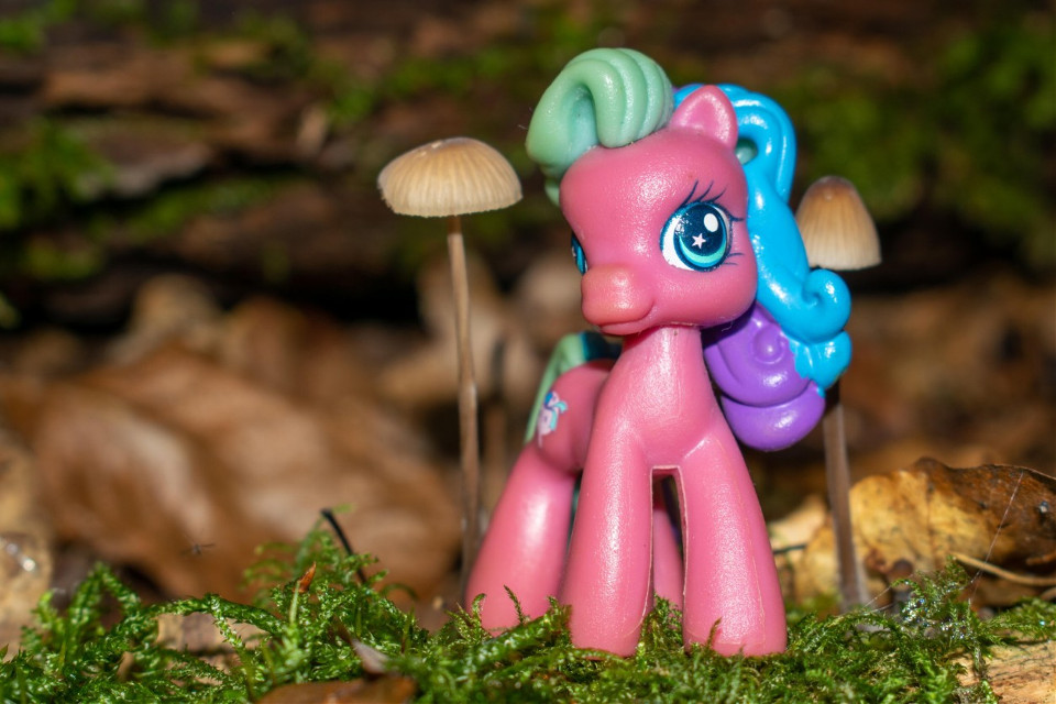 😜😂😂😂  #photography #toy #forest #macro #mypic #pink #pony