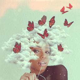 clouds hairart butterflies freetoedit