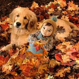 freetoedit fc expressyourselffall2020 autumn fall