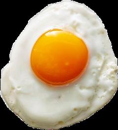 sunnysideup egg eggs breakfast breakfasttime freetoedit