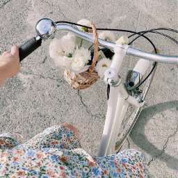 bike flowers basket aesthetic asthetic fresh vsco flower