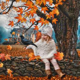 freetoedit autumn fall autumnleaves woods