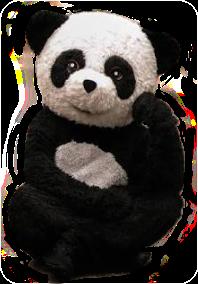 panda_de_la_maldad extremoooooooo🐼🐼 yolo_aventuras pandamara freetoedit extremoooooooo