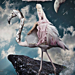 freetoedit fantasy surrealistc woman flamingo ocean fallingstars beautyofnature beautyallaround madewithpicsart myimagination myedit