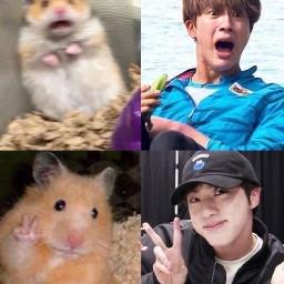 bts memes seokjin freetoedit