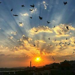 palestine sunshine sunrises photography freetoedit pcgoldenhour goldenhour
