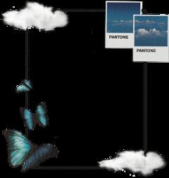 blue blueaesthetic bluesky pantone pantonecolors butterfly butterflies bluebutterfly cloud clouds frame aesthetic aesthetictumblr aestethicsticker aestheticframe framesquare freetoedit unsplash