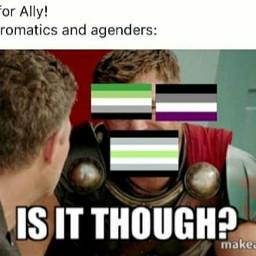 meme memes gay lgbt lgbtq lgbtqia lgbtsupport pride gaymemes ace asexual aro aromantic agender