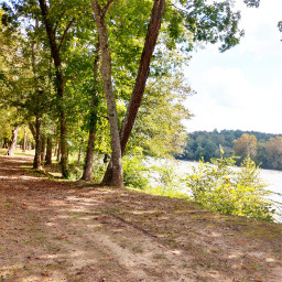 freetoedit autumn happy nature naturelover