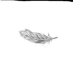 aesthetic tumblr black kpop cute leaf remixit freetoedit