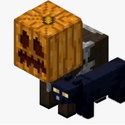 halloween minecraft cow babycow minecraftcow pumpkin jackolantern minecraftcat black cat blackcat freetoedit