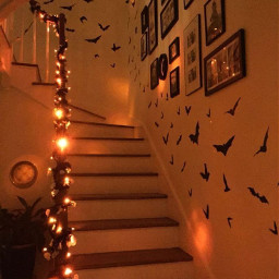 room stairs orange hallowen fall color viral famous trending trend zoe avani charli addison aesthetic vintage autumnflatlay