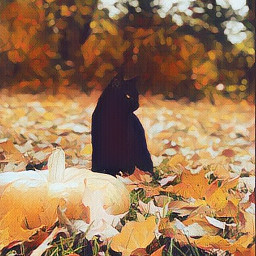 freetoedit fall october halloween halloweencat cat