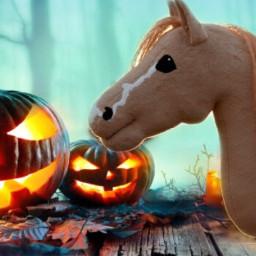 halloween hobbyhorse ssousercrew love pumpkin kürbis easy orange follow noremix eye freetoedit