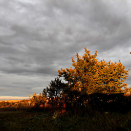 autumnmood autumncolors