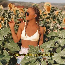 happyquotes quotesandsayings teaganrybka rybkatwins sunflowers flowers teamrybka rybkatwinsforever rybkanators quotes quote text textoverlay overlay textstickers overlays quotesaboutlife freetoedit