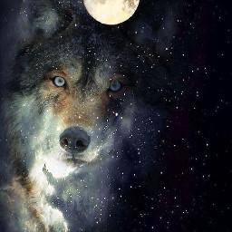 mooneclipse wolfart galaxywolf
