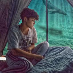 ocean fantasy campamento campcamp ballena freetoedit