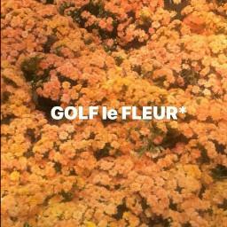 golflefleur golflefleurrrflowers tylerthecreator