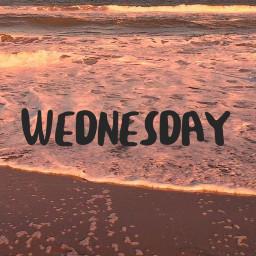 wednesday humpday brach ocean pretty asthetic freetoedit