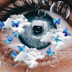 dreaming sky clouds butterfly bluebutterfly freetoedit