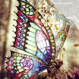 newspaperaesthetic beautifulbutterfy butterfly glassart freetoedit srcvintageaesthetic vintageaesthetic