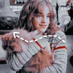 hermionejeangranger hermionegranger goldentrio freetoedit