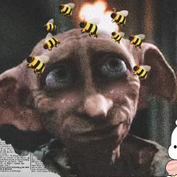 dobbyisafreeelf dobby dobbyisfree dobbythefreeelf harrypotter slytherin hufflepuff ravenclaw griffindor freetoedit srcbethequeenbee bethequeenbee