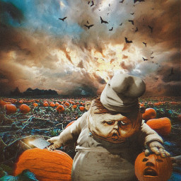 halloween creepy pumpkin pumpkinfield scary cook freetoedit
