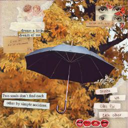 undertheumbrella umbrella fallaesthetic auttumn aestheticquotes fallvibes freetoedit ircundertheumbrella