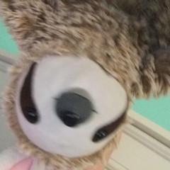 slothythesloth