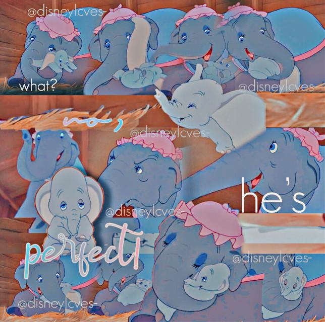 "* ┏━━━━━━━━━━━━━━━┓ *       𝕨𝕖𝕝𝕔𝕠𝕞𝕖 𝕥𝕠 𝒹𝓊𝓂𝒷𝑜'𝓈 𝕔𝕚𝕣𝕔𝕦𝕤! * ┗━━━━━━━━━━━━━━━┛  IF I PUT (user changed?) NEXT TO YOUR USER, PLEASE NOTIFY ME IMMEDIATELY IF YOU DID/DIDNT.  🤡🎪   ꧙꧙ ᥴ꠸᥅ᥴꪊᦓ ꪖꪀ꠸ꪑꪖꪶᦓ: 🐘 ———▸ ꜱᴛʏʟᴇ: blend 🐵 ———▸ ᴄʜᴀʀᴀᴄᴛᴇʀ: elephants 🐘 ———▸ ᴛᴇxᴛ: ""what? no, he's.. perfect!"" 🐵 ———▸ ᴄʀᴇᴅɪᴛꜱ: myself 🐘 ———▸ ꜰᴏɴᴛꜱ ᴜꜱᴇᴅ: geosans light, the yoshi, alitta calligraphy  🐵 ———▸ ꜰɪʟᴛᴇʀꜱ ᴜꜱᴇᴅ: pa8 (polarr), vin3, hdr 🐘 ———▸ ᴀᴘᴘꜱ ᴜꜱᴇᴅ: pa, phonto, polarr   ꧙꧙ ꧙꧙ ꧙꧙ ꧙꧙  🤹♀️🎟   ꧙꧙ ꠹ꪊᧁᧁꪶꫀ᥅ ꪖᥴꪻᦓ: 🎡———▸ ᴛɪᴍᴇ: 10:55 pm 🎠———▸ ᴅᴀᴛᴇ: 11.09.20 🎡———▸ ᴡᴇᴀᴛʜᴇʀ: 57* 🎠———▸ ᴡʜᴇʀᴇ ᴀᴍ ɪ: couch 🎡———▸ ᴀʀᴄʜɪᴛᴇᴄᴛꜱ ɴᴏᴛᴇꜱ: can we get to 150 by the end of november? 🥺❤️ 𝒻𝒶𝓃 𝒸𝑜𝓊𝓃𝓉: 132  ꧙꧙ ꧙꧙ ꧙꧙ ꧙꧙  💵🍫   ꧙꧙ ᠻꪮꪮᦔ ᦓꪻꪖꪀᦔ: 🍿———▸ Qᴏᴛᴅ: how are you feeling? 🥤—▸ ᴀᴏᴛᴅ: good ❤️ 🌭🥜 ꧙꧙ ▸ 𝓸𝓯 𝓽𝓱𝓮 𝔀𝓮𝓮𝓴𝓼: 🍕 ———▸ ʙᴏᴏᴋ: a long walk to water  🍦 ———▸ ᴍᴏᴠɪᴇ: a babysitters guide to monster hunting 🍕 ———▸ ꜱʜᴏᴡ: the worst witch 🍦 ———▸ ꜱᴏɴɢ: positions by ariana grande   ꧙꧙ ꧙꧙ ꧙꧙ ꧙꧙  𝔀𝓮𝓵𝓬𝓸𝓶𝓮 𝓽𝓸 𝓽𝓱𝓮 𝓽𝓪𝓰𝓵𝓲𝓼𝓽: use 🐘 to join, 🎪 to leave, and 🤡 if you changed your user!  ꧙  ♥ @d3nki_cos ♥ @ii_charlidamelio ♥ @ii_hxneyxxcrxmbss (user changed?) ♥ @sugarysweetx ♥ ♥ @slytherin_draco_ (user changed?) ♥ @scftangel_ ♥ @minasupportbot- (user changed?) ♥ @melanizmxrtine ♥ ♥ @awhdisney- ♥ @elisa000_f4f ♥ @xxgorasxx ♥ @_attqraciia__ (user changed?) ♥ @catty_holland ♥ @andreaacevesbarajas3 (user changed?) ♥ @candy_gxcha ♥ @-kevins_moonie- ♥ @thatlazygirlmari ♥ @aesthetic_bts_army ♥ @ave_aesthetics ♥ @ele_the100_ ♥ @that_one_fangirl21 ♥ @hawks_dabi♥ @awht3ddybear (user changed?) ♥ @_im_an_avacado_ (user changed?) ♥ @melanieeilishisspicy ♥ @sunny-skyz ♥ @catfergus06 ♥ @-_onyx_- (user changed?) ♥ @less_sleep_than_chan ♥ @emiz082 ♥ @warriorcatsanime ♥ @dxzeoflove ♥ @honeylove_965 ♥ @chxrsfqiry_ (user changed?) ♥ @el1zab3thsky ♥ @fqirygloss_ ♥ @girlonline247 ♥ @_alice_quagliano_ ♥ @linctavia_clexadi ♥ @mccnxstar ♥ @emorimurphy ♥ @kaoriynw ♥ @imxne_abbs ♥ @bibble- ♥ @alyssia_gachalife ♥ @indiefr0gs ♥ @med_abdelwahhab ♥ @disneyqueen- ♥ @graces_edit"