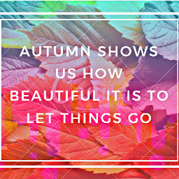 autumn fall beautiful shortbutsweet