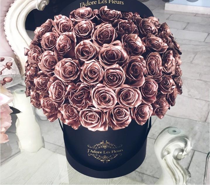 ༄༄𝐏𝐢𝐧𝐤/𝐫𝐨𝐬𝐞-𝐠𝐨𝐥𝐝/𝐛𝐞𝐢𝐠𝐞 𝐭𝐡𝐞𝐦𝐞༄༄  ♡︎♡︎♡︎♡︎♡︎♡︎♡︎♡︎♡︎♡︎♡︎♡︎♡︎♡︎♡︎♡︎♡︎♡︎♡︎♡︎♡︎♡︎♡︎  ⛲୨୧𝐓𝐀𝐆𝐒 »             @tpwkxoxo (irl bestie 💖)             @juliaa_xo (irl friend)             @-shqwers             @blazedboca- (my pot of gold💸)             @-yuhxitsmaya  #rosegold #pink #beige #newtheme #aesthetic #yay #cute #flowers #prettyflowers #rosegoldaesthetic  #rosegoldaestheticpics #newthemeisexciting #hopeyoulikeit #amazingphoto #amazingphotography #colourful #myaesthetic #Iwantthoseflowers #mylifeiscomplete #cuteflowers #reallycuteflowers #kimmastopnowwiththehashtags #bye